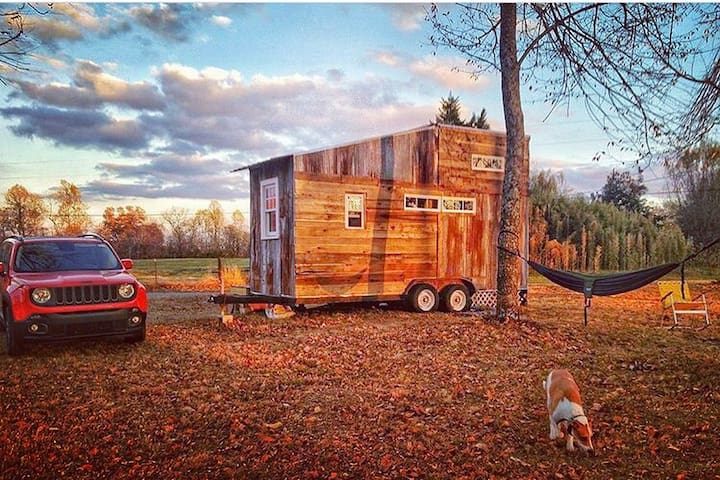 Cozy Tiny House Near Jack Daniels & Nashville. - Petersburg - Cabane