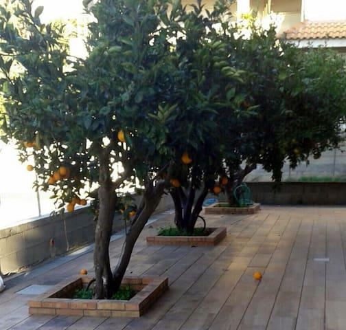 Giardino Zen - Marina di Gioiosa Ionica - Apartment
