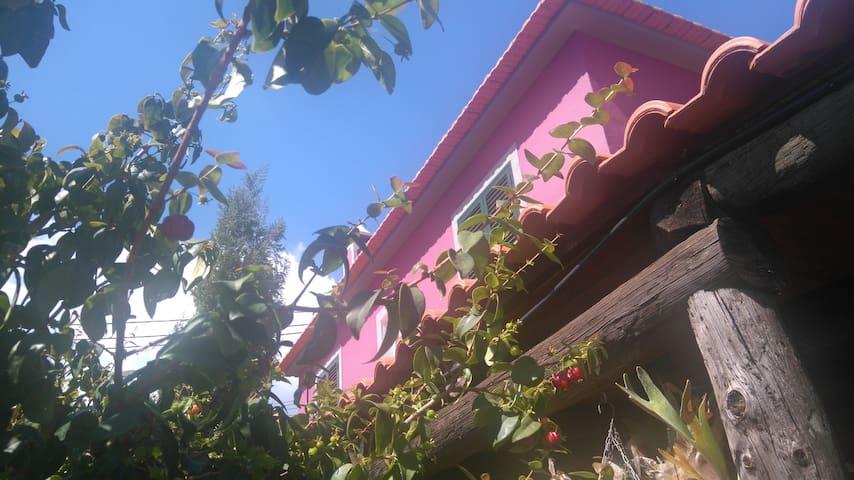 Vivenda Madruga - Gaula - Casa