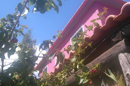 Vivenda Madruga - Gaula - Haus