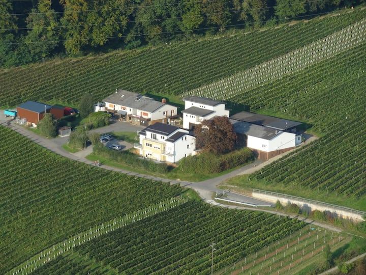 Ferienwohnung auf Heidelberger Weingut