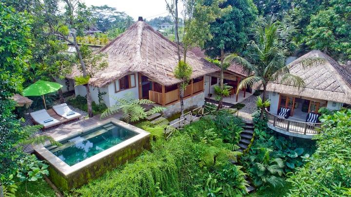 Mambo Valley, Luxury 2 Bed Villa near Ubud