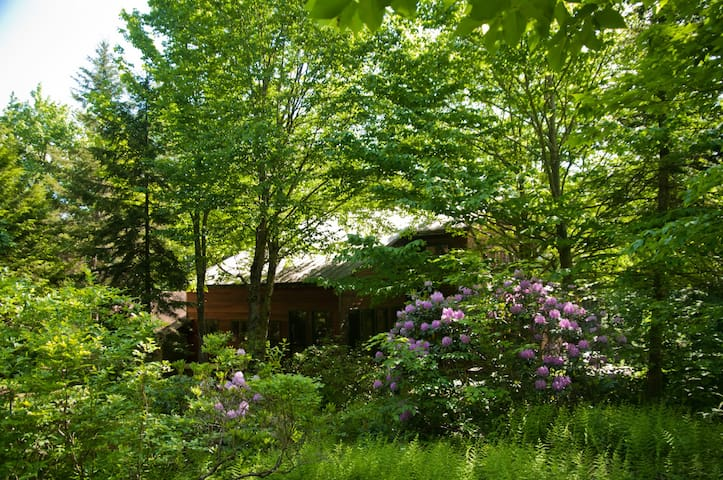 Birch Haven Arts & Nature Retreat