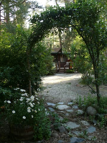 Lilac Cottage, Mountain Cabin on the Creek - Markleeville - Cabaña