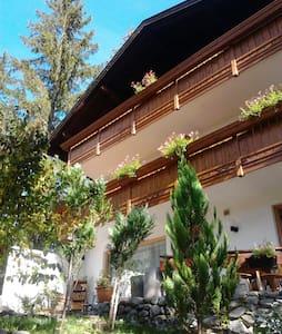 appartamento davanti alle montagne - Leutasch - Lakás