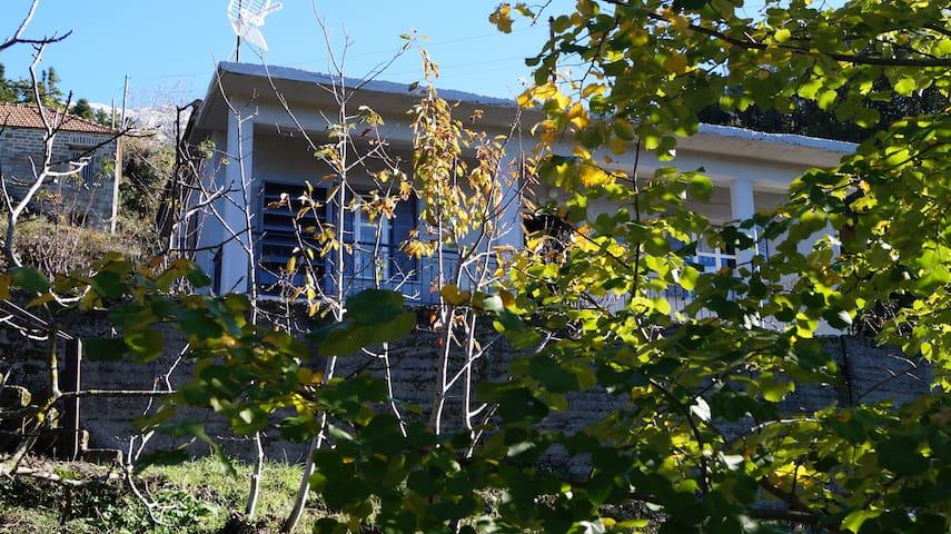 Tzoumerka Hospitality - Agnanta - House