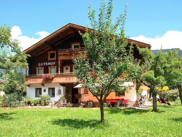 45 m² apartment Gielerhof in Zell / Zill Valley