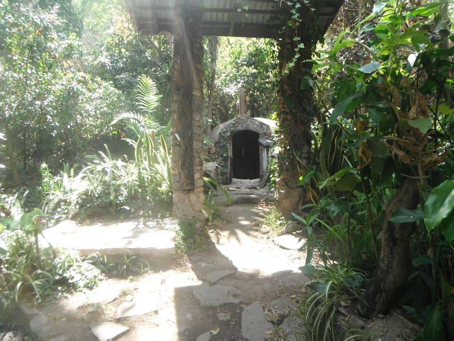 Garden Sauna Experience with Outdoor Shower