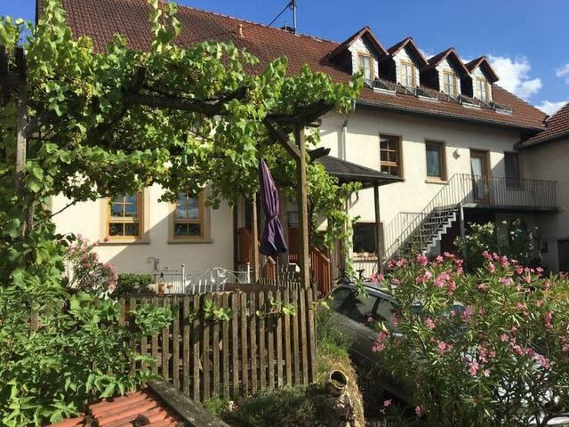 Felsenberghof Wein und Gästehaus