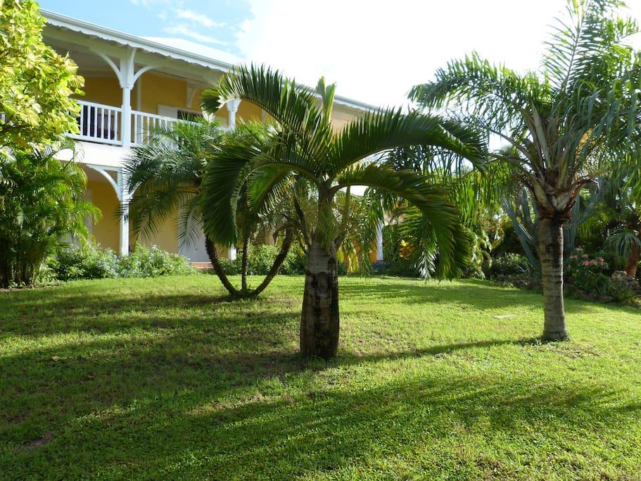 Appartement bord de mer avec jardin tropical for Jardin tropical guadeloupe