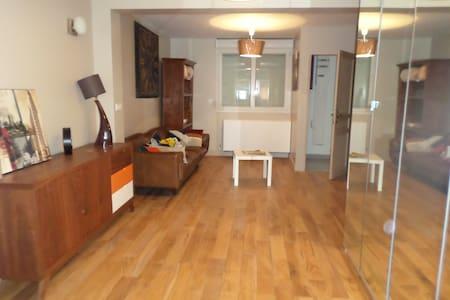 RDC d'une maison type loft - Reims - Loft