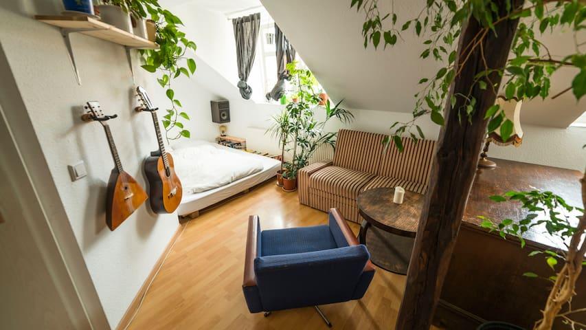 Cozy spacious room in Dresden's bohemian area! :)