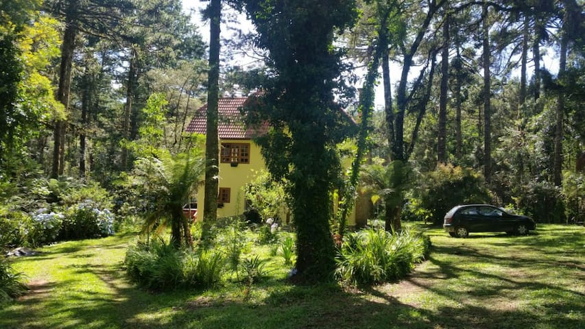 Cantinho das Araucárias - Monte Verde - Haus
