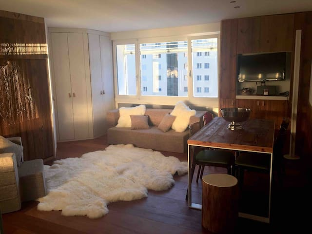 """Suite Apartment"" close to ski slopes,Lake,Center!"