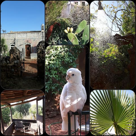 Studio Hobbit da Quinta de Aulé