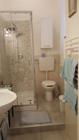 inside private  bathroom with shower, hair-dryer.