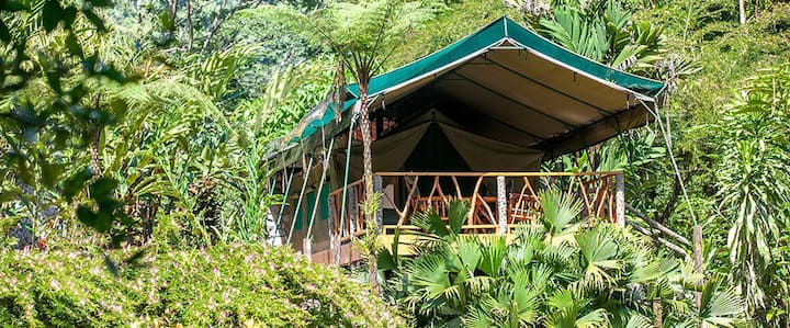 Luxury Safari Tent in the Savegre Valley