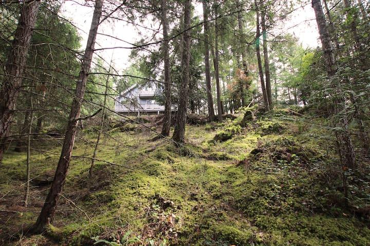 Cozy Cabin on Mayne Island - Mayne Island - Casa