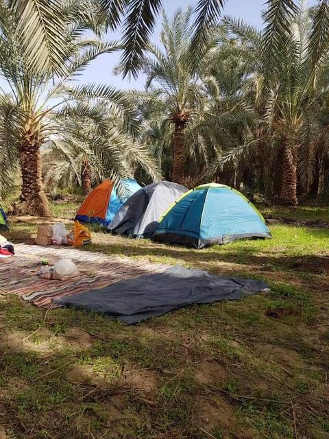 Bahariya Oasis, black and white desert Camping