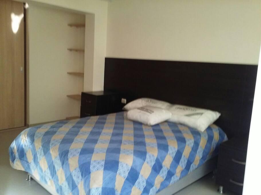cama de dos plazas, con dos veladores, 4 repisas y un clset amplio