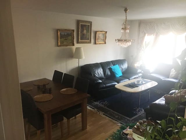Room in a big apartment, 20 min to the city.