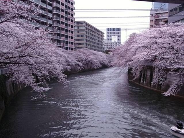 Near Shibuya渋谷/Shinjuku新宿, 3min walk Gotanda Sta.☆ - Shinagawa-ku