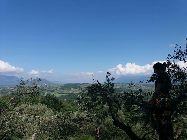 Sul sentiero degli asini