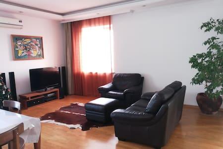 Spacious 201 square meters flat