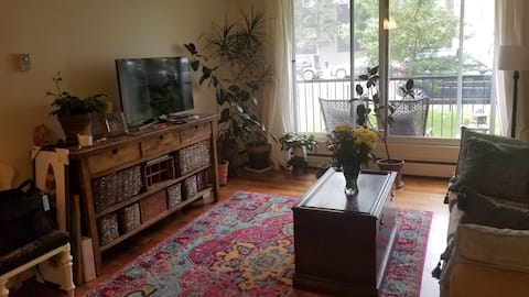 Cute & convenient Sunnyside/Kensington 1 bedroom.