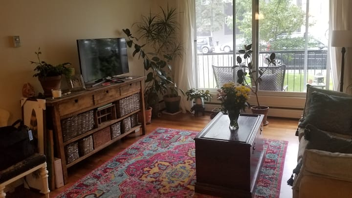 Cute & convenient Sunnyside/Kensington 1 bedroom.