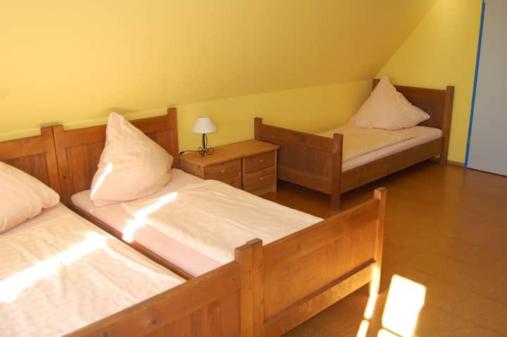 Jugendgästehaus Nickelsdorf (Crossen OT Nickelsdorf) - LOH06274, Dreibettzimmer mit Dusche und WC