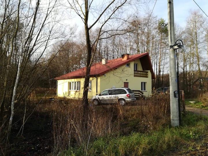 Family house near forest .domek pod lasem