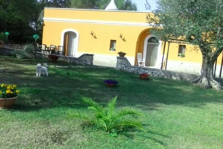 Villa Nonna Natalizia - Selva di Fasano