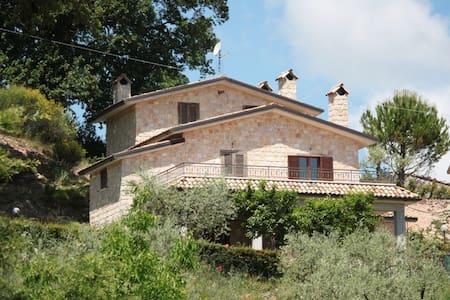 Borgo rurale con case indipendenti - Forlì del Sannio - Lejlighed