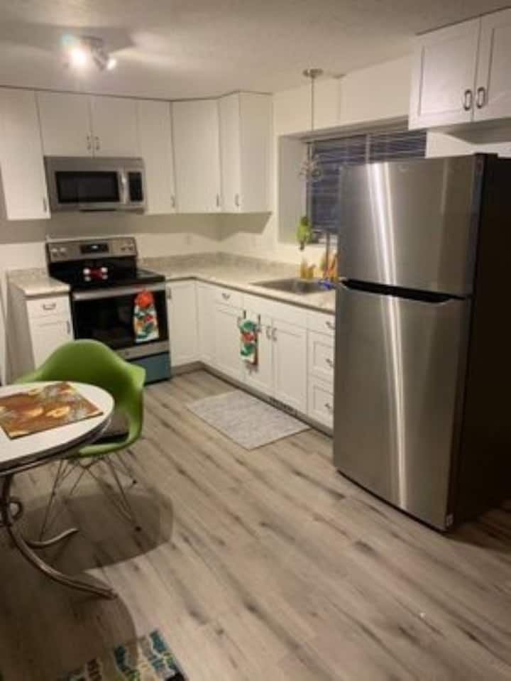 Newly renovated open concept apartment