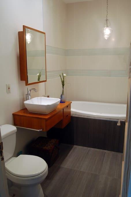 Recently renovated, European-style bathroom.