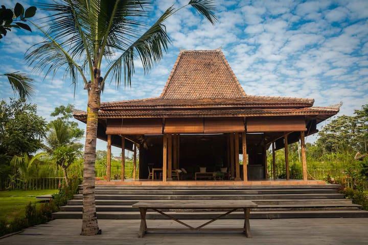 Authentic 2BR spacious villa in nature near Ubud