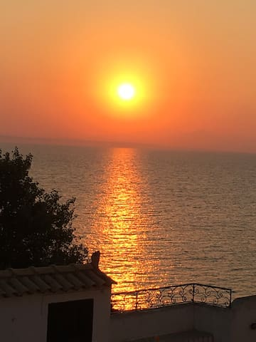 zakinthos dating site The cheapest way to get from zakynthos to milos island costs flights from zakinthos to its collections include exhibits dating from the early bronze.