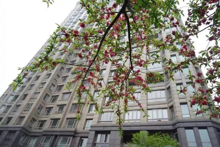 市中心江景公寓,俯瞰宁波,一览繁华