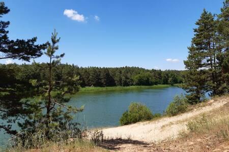 Эко- дом у воды и леса