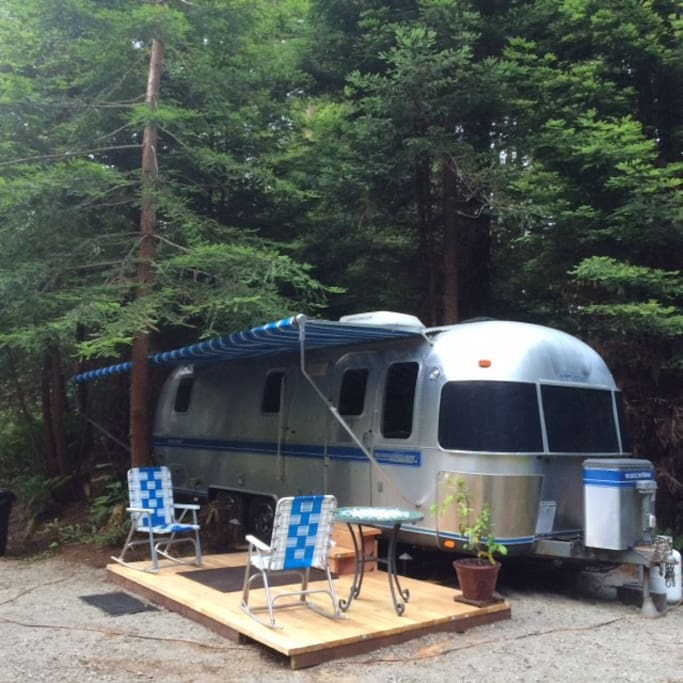 Another of the Airstream in the Redwoods.