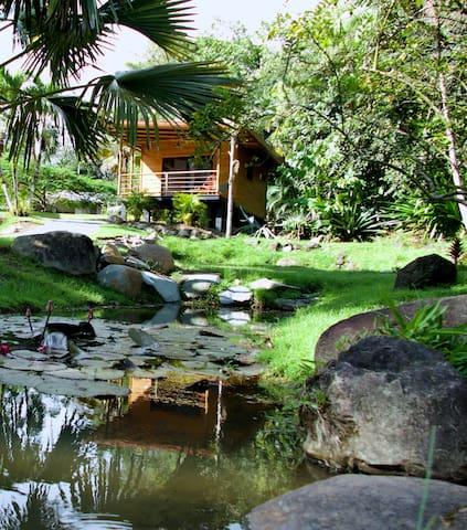 BuenaOnda Lodge Ojochal-La cabane des gens heureux