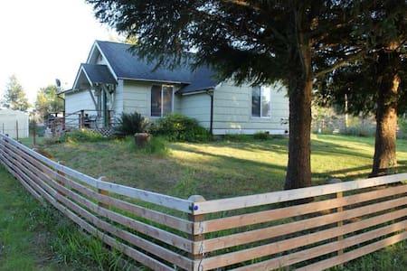 Grandma's House - Ház