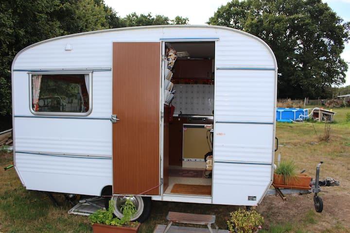 Petite caravane cosy & vintage en lisière de forêt