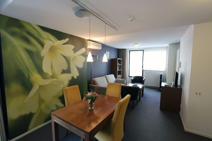 Appartement met apart slaapkamer kitchenette,airco - Oirschot