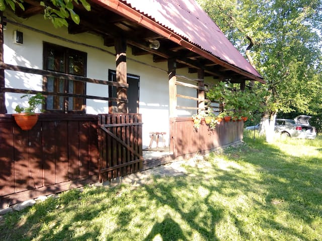 Traditional house in Maramures,Transylvania - Sindresti