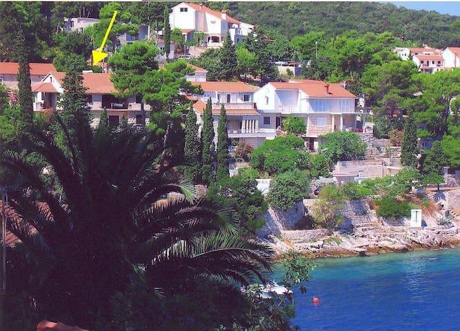Villa Marija - Korčula - Apartment