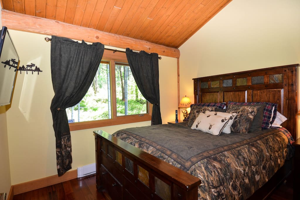 Bedroom has TV, queen bed, and window looks into the forest.