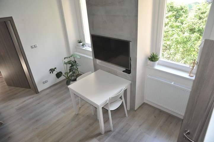Cosy apartment in Brno city center