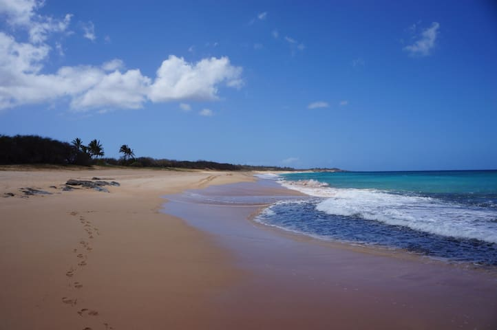 Stunning Whitewater View in Molokai Beach Condo